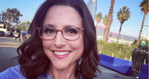 Going Back To Work After Cancer Julia Louis Dreyfus And The
